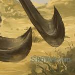 Patialvi Baba - dual sabres